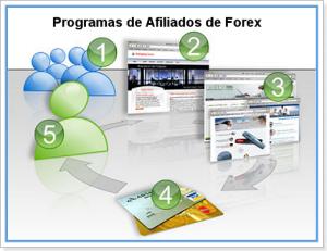 programas_afiliados_forex